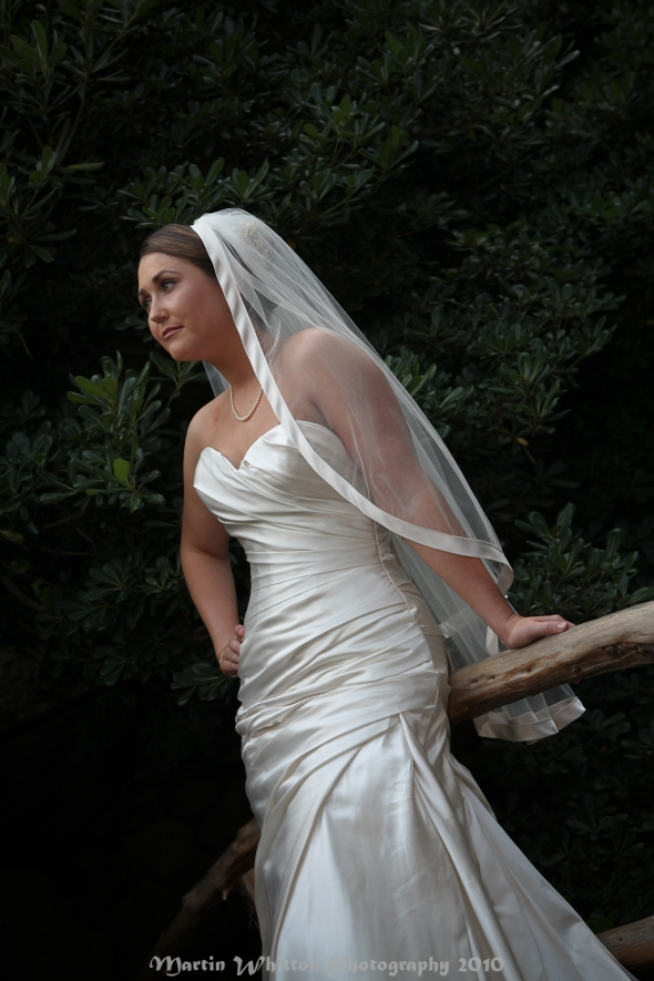 Bride poses on the bridge at Zilker Botanical